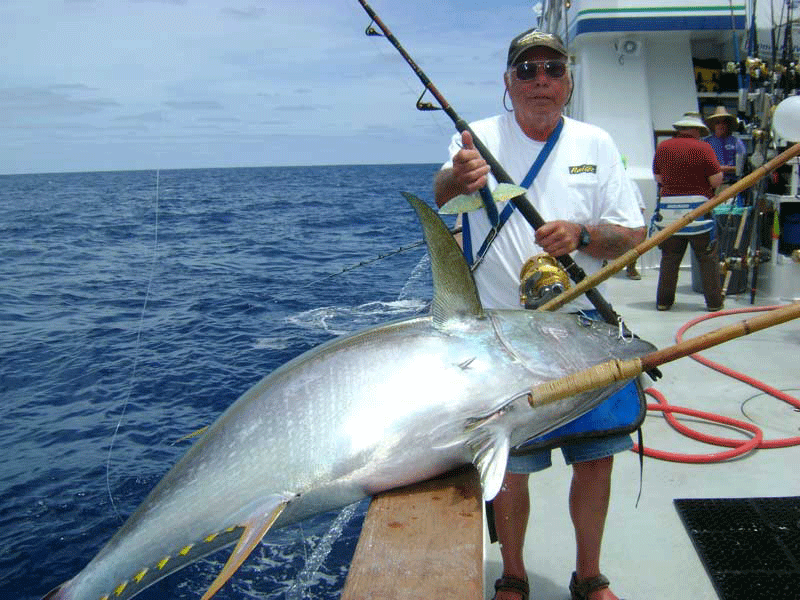 Excel boating the cows 976 tuna the original leader in for 976 tuna fish report