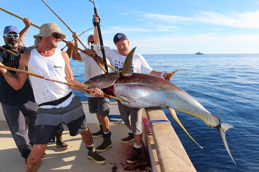 For a complete season schedule on the royal polaris click for Point loma fishing report