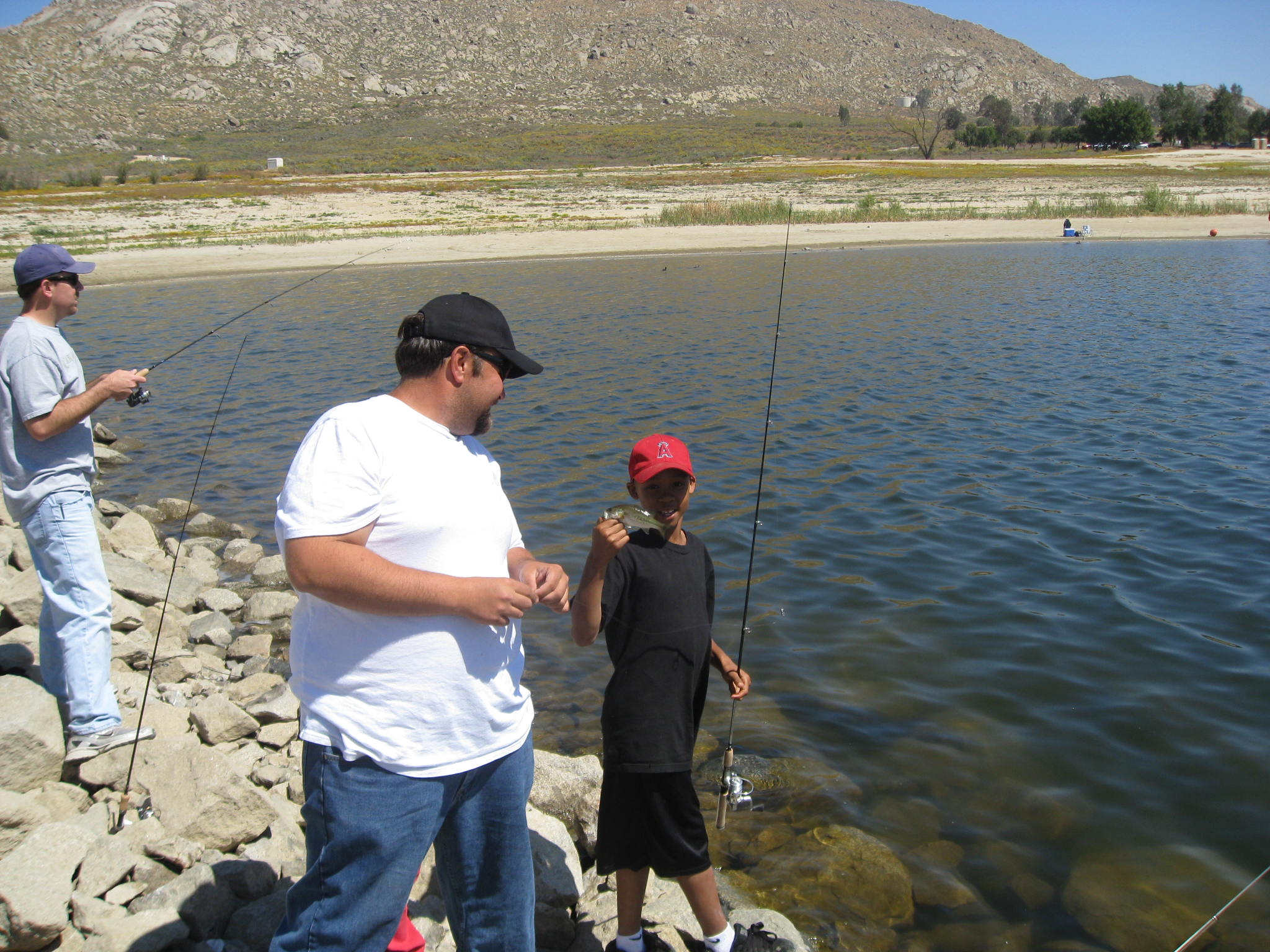 976 freshwater fish report castaic stripper 976 fresh for Oceanside fish report