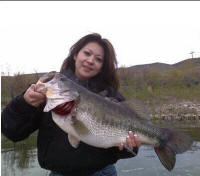 2009 february 976 fresh freshwater fish report for Lake piru fishing report