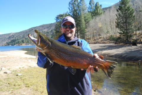 2009 october 976 fresh freshwater fish report for Twin lakes fishing report