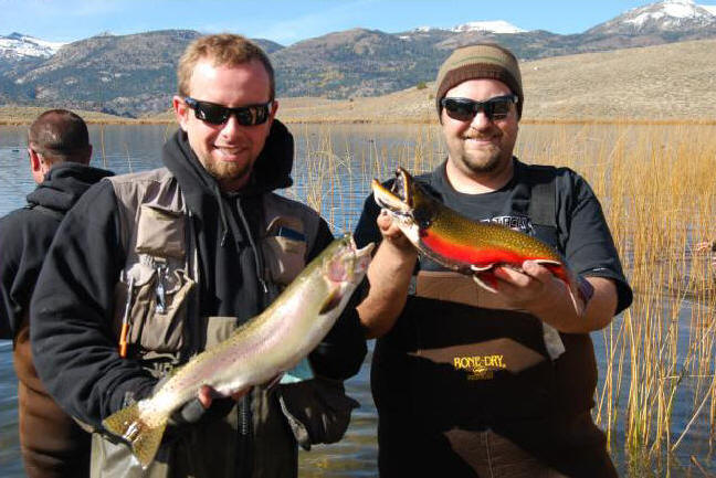 Photos 976 fresh freshwater fish report for Hesperia lake fishing report