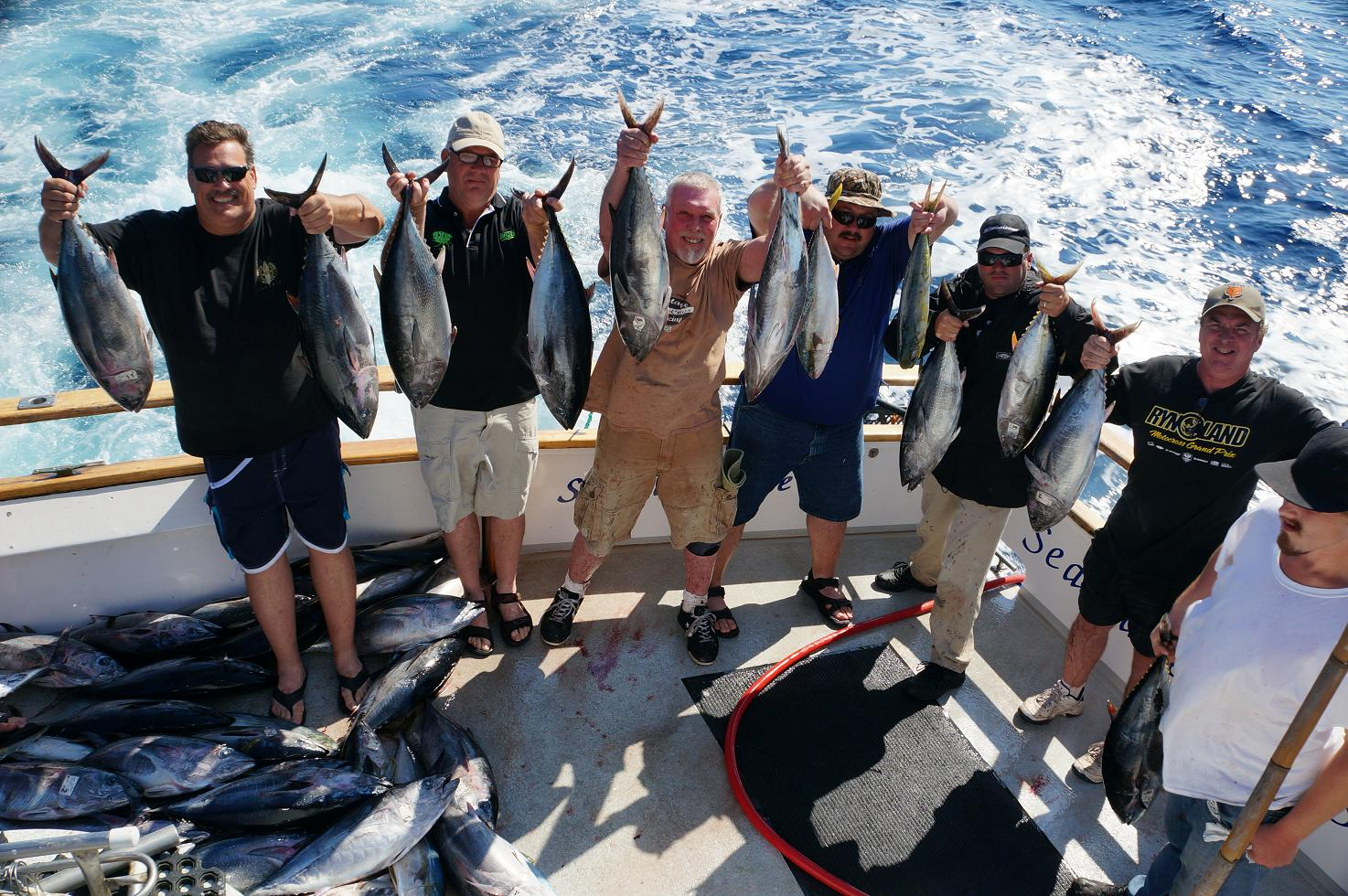 Sea adventure 80 at h m landing major score on quality for H m landing fish count