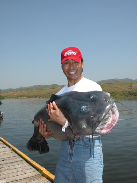 San luis reservoir fishing report all the best fish in 2018 for San luis reservoir fishing report
