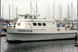 Endeavor (Seaforth Landing)