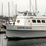 Endeavor Sportfishing